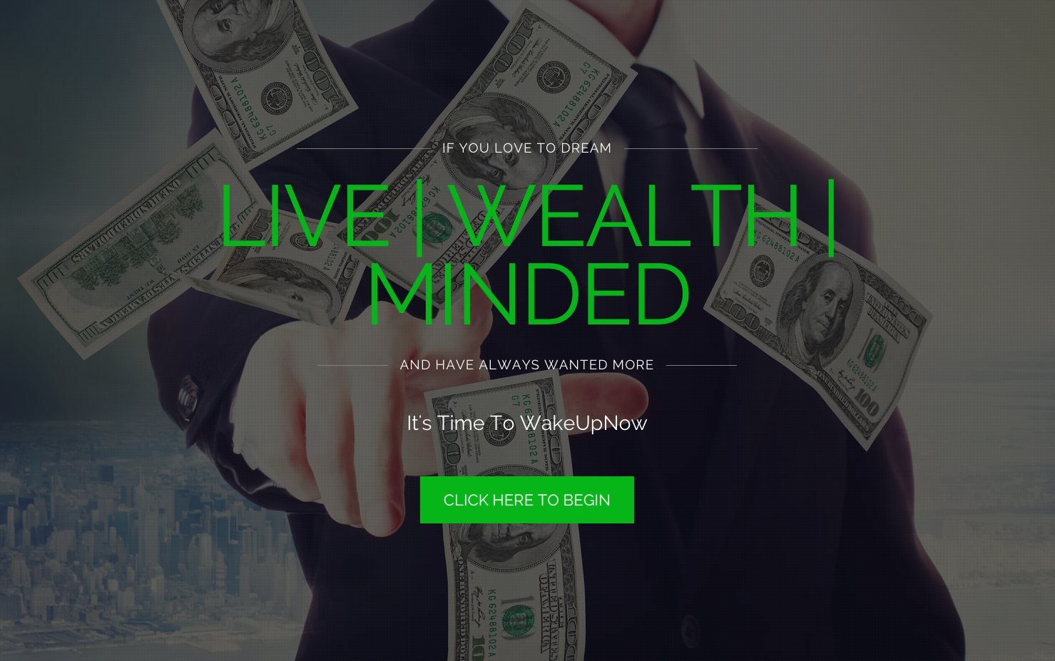 webvisiblegroup-website-design-project-live-wealth-minded